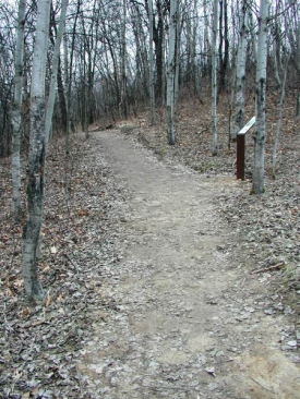accessible-hikng-trail