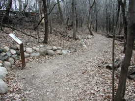 hiking-trail-w-boulder-back-cut