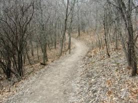 hiking-trail