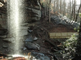 3-platform-and-moore-cove-falls