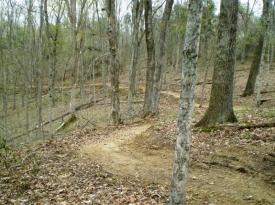 winding-trail